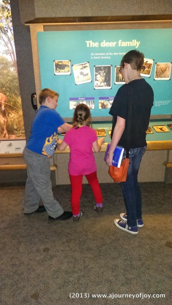 Kids reading about animal scat.