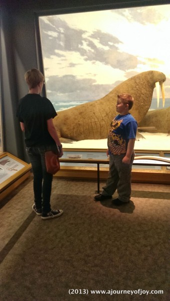 Sarah and Samuel talking about the Walrus'.